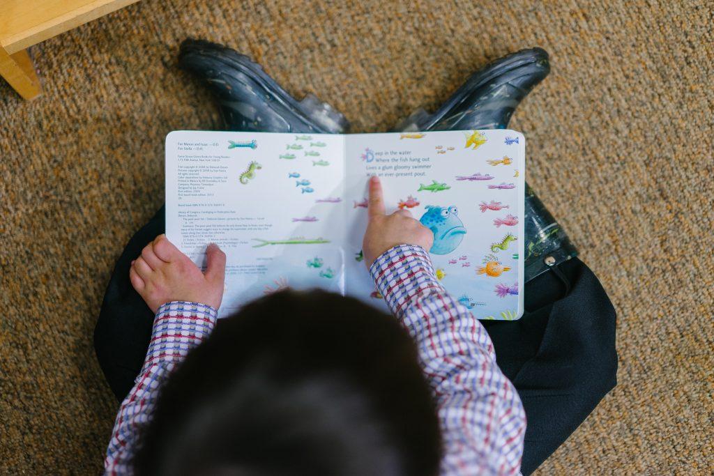 Puisēns lasa grāmatu